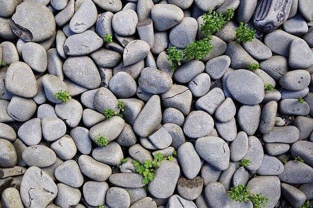 Steine die sich für das bemalen eigenn